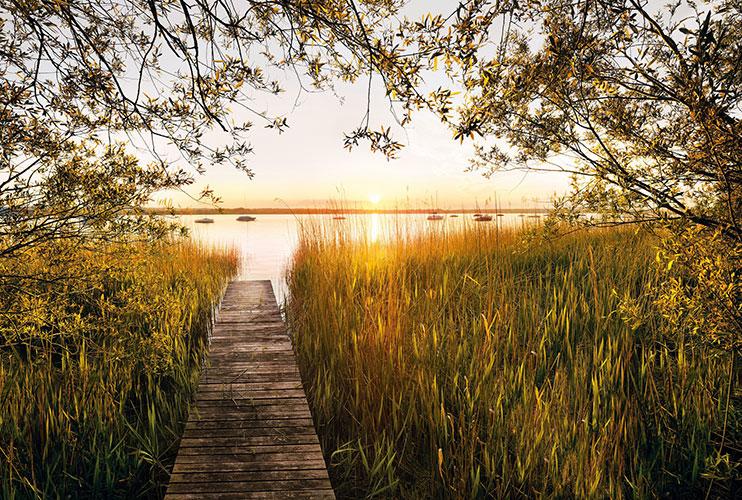 Fototapeet XXL4-052 Lakeside