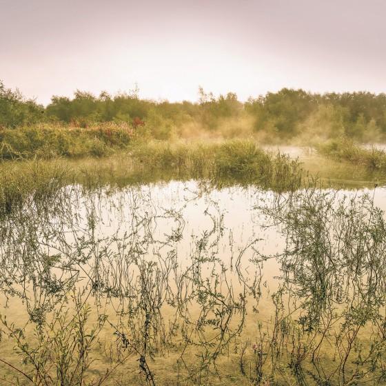 Fototapeet Stefan Hefele - Morning View II SH065-VD4