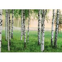 Fototapeet IdealDecor 00290