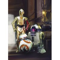 Fototapeet 4-447 Star Wars Three Droids