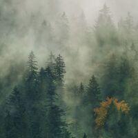Fototapeet Carpathians Tales PSH036-VD1