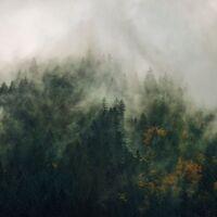 Fototapeet Carpathians Tales PSH036-VD3