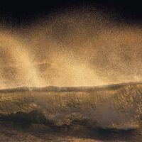 Fototapeet Stefan Hefele - Golden Wave SH006-VD1