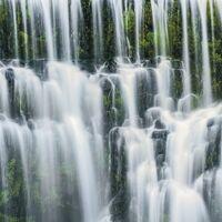 Fototapeet Stefan Hefele - Ensemble of Veils SH049-VD3