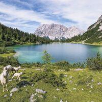 Fototapeet Stefan Hefele - Paradise Lake SH070-VD4