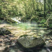 Fototapeet Stefan Hefele - Tranquil Pool SH079-VD4