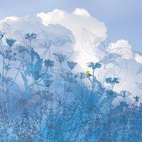 Fototapeet Infinity - Blue Sky 6041A-VD4